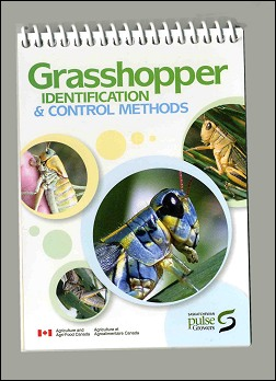 Grasshoper IDENTIFICATION & CONTROL METHODS